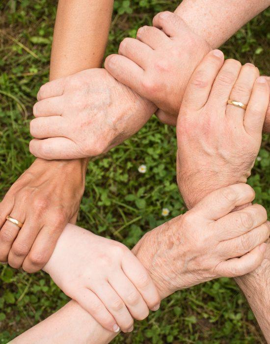 collaboration-community-cooperation-461049